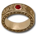 Eternal Spring Ring etched in 14k Gold