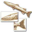 Barracuda Pin in 14K Gold