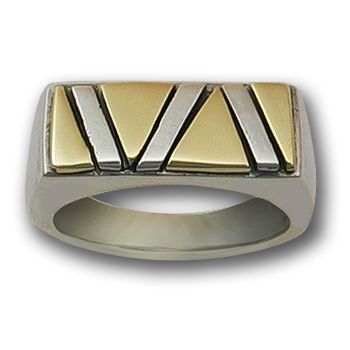 Pride Ring in White & Yellow 14k Gold