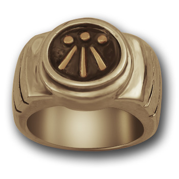 Awen Ring in 14k Gold